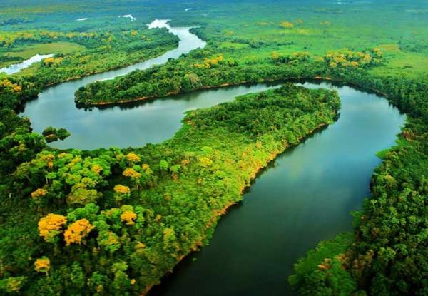 Itaú arrecada recursos para a Amazônia